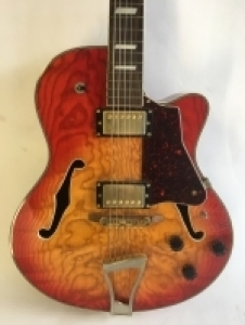 Guitar & Musical Instrument Collection Auction