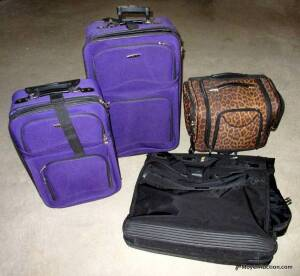 4pieces of luggage: 2 Prodigy rolling bags, leopard-print bag on wheels, and hanging bag