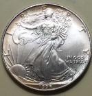 1 - 1995 American Eagle uncirculated 1oz. silver dollars